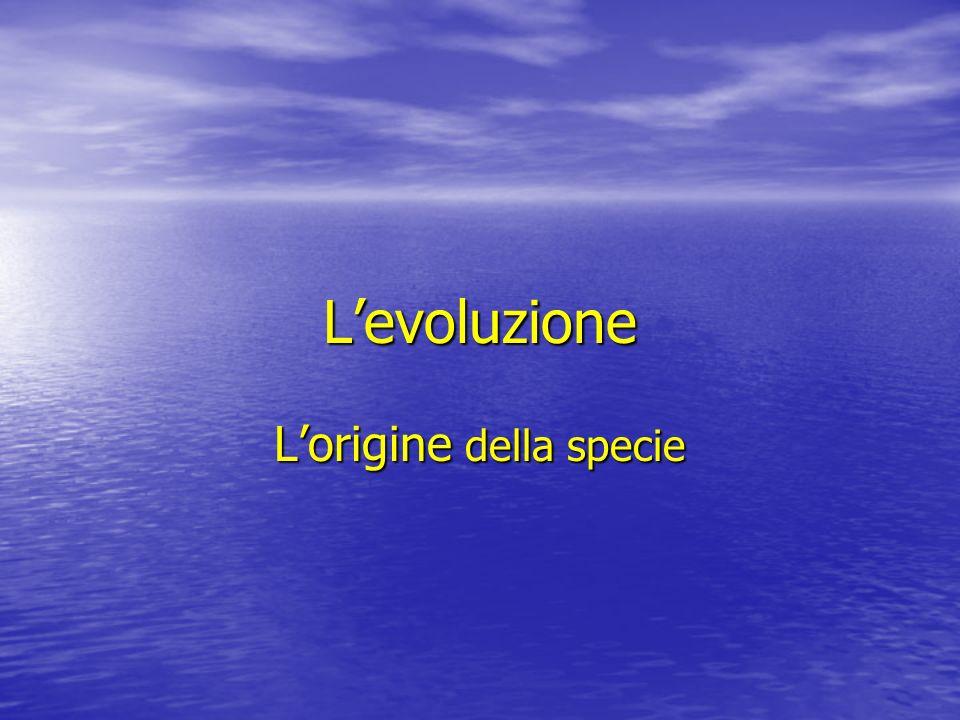L'origine della specie