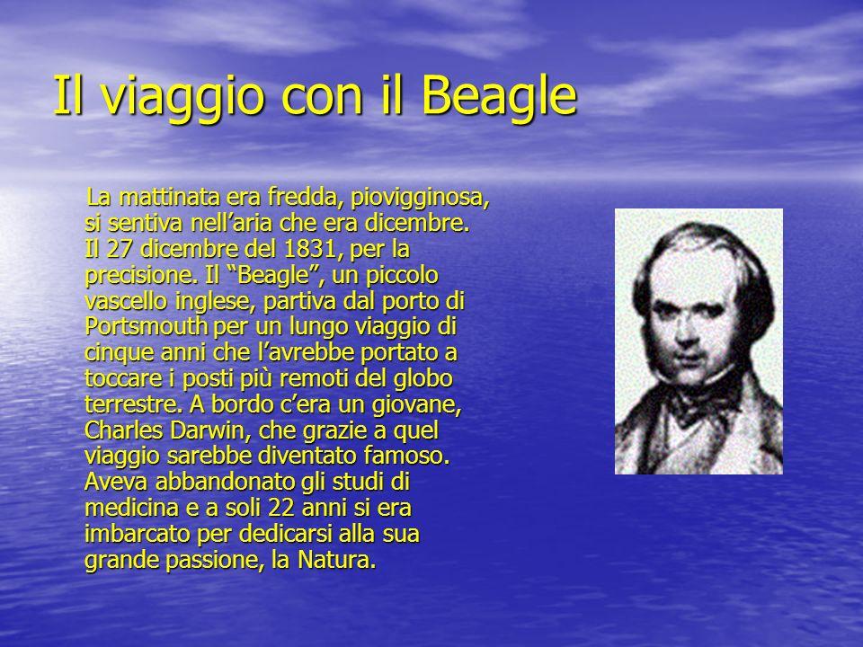 Il viaggio con il Beagle
