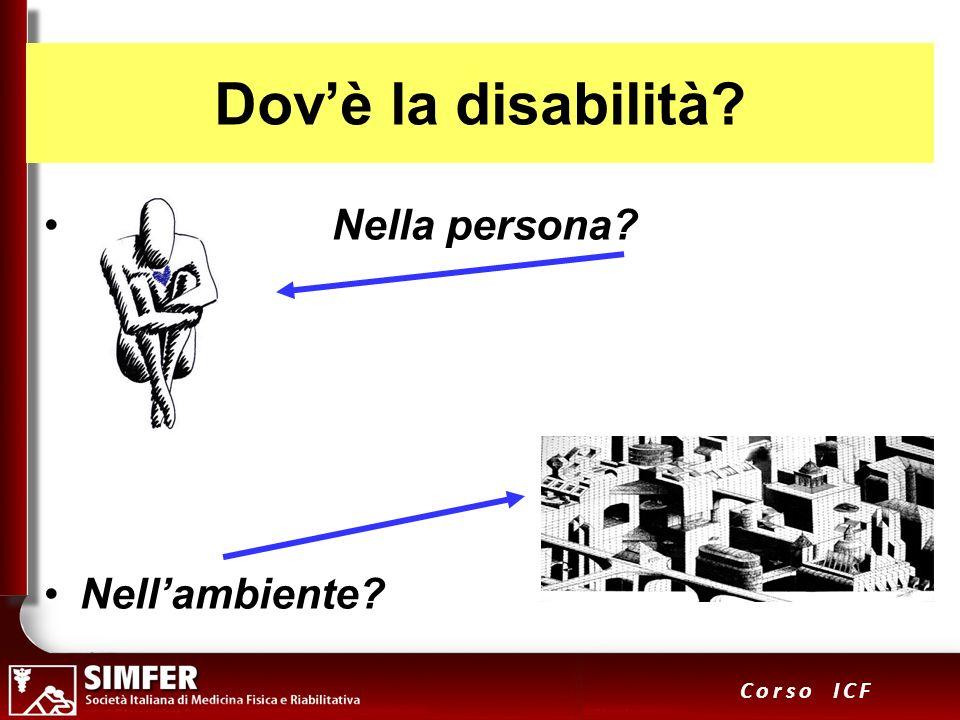 Dov'è la disabilità Nella persona Nell'ambiente