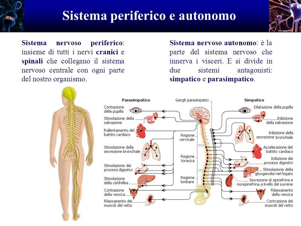 Sistema periferico e autonomo
