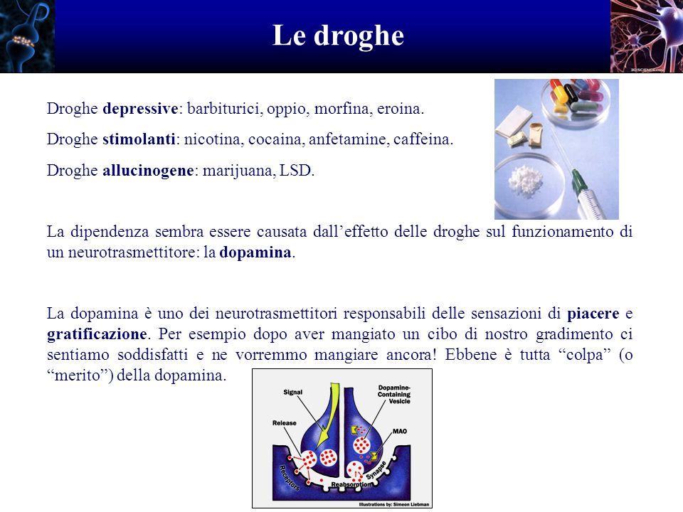 Le droghe Droghe depressive: barbiturici, oppio, morfina, eroina.