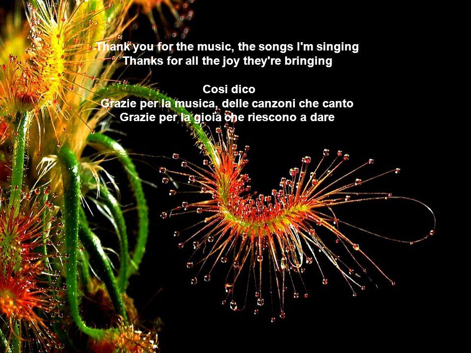 Thank you for the music, the songs I m singing Thanks for all the joy they re bringing Cosi dico Grazie per la musica, delle canzoni che canto Grazie per la gioia che riescono a dare