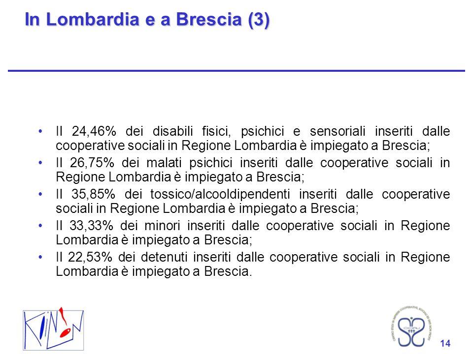 In Lombardia e a Brescia (3)