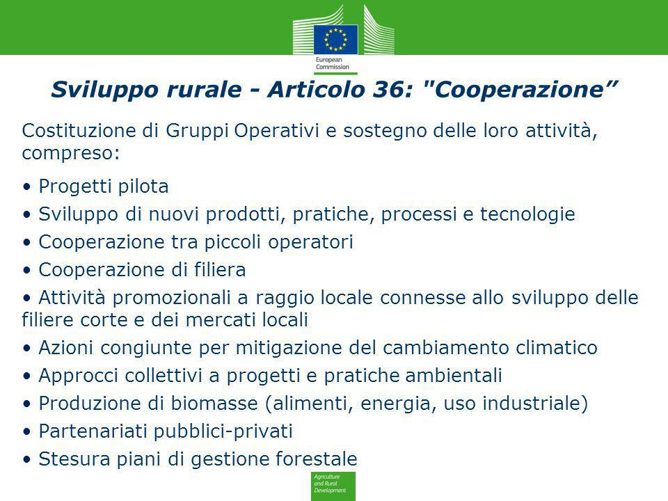 Sviluppo rurale - Articolo 36: Cooperazione