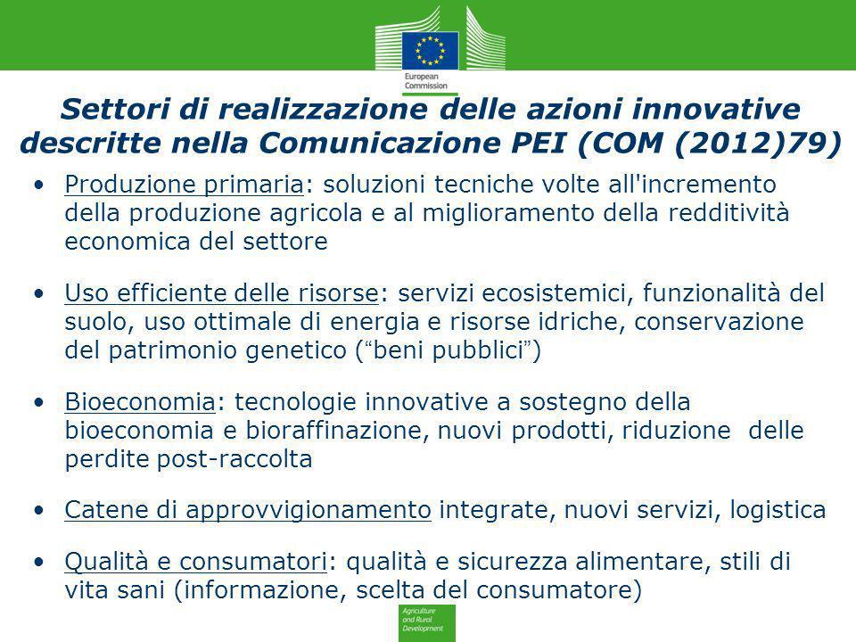 Settori di realizzazione delle azioni innovative descritte nella Comunicazione PEI (COM (2012)79)