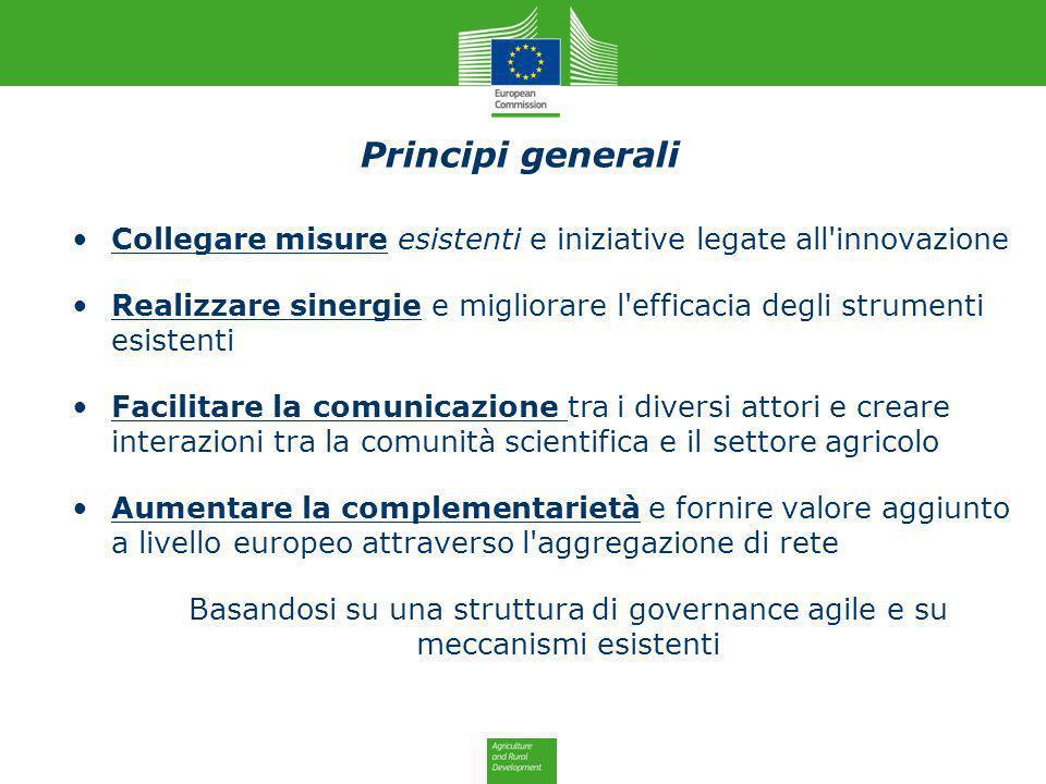 Principi generali Collegare misure esistenti e iniziative legate all innovazione.