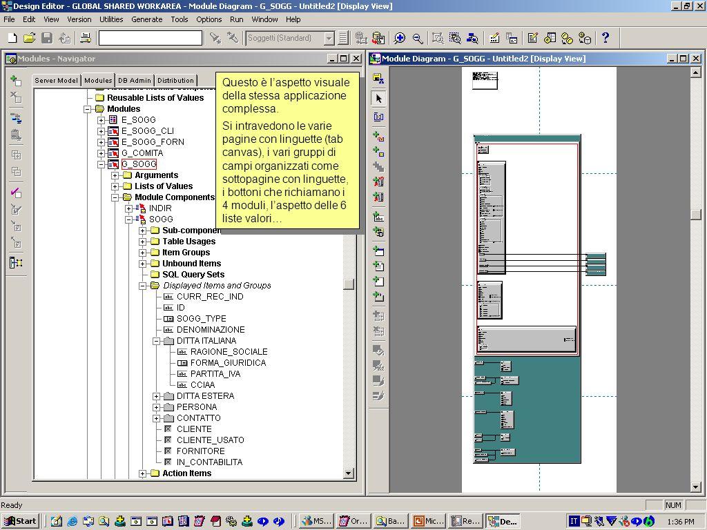 Questo è l'aspetto visuale della stessa applicazione complessa.
