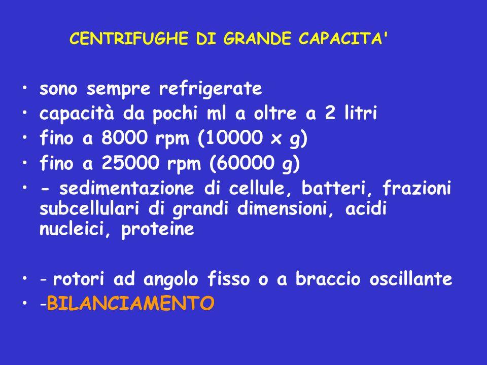 CENTRIFUGHE DI GRANDE CAPACITA