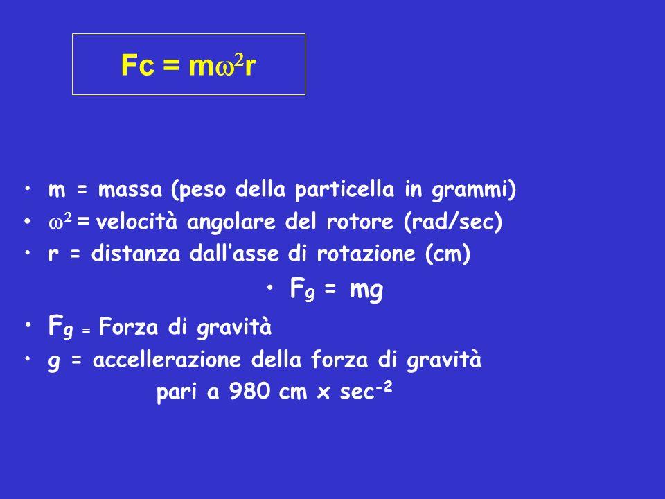 Fc = m2r Fg = mg Fg = Forza di gravità