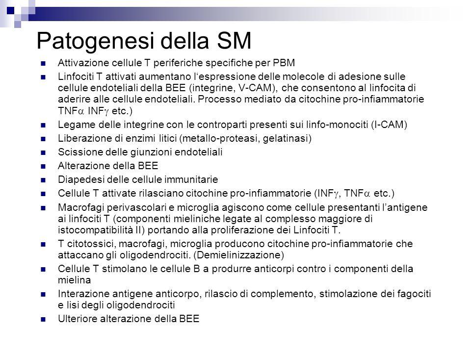 Patogenesi della SMAttivazione cellule T periferiche specifiche per PBM.