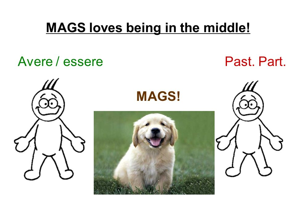 MAGS loves being in the middle!