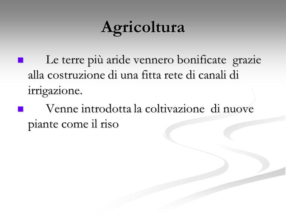Agricoltura Le terre più aride vennero bonificate grazie alla costruzione di una fitta rete di canali di irrigazione.