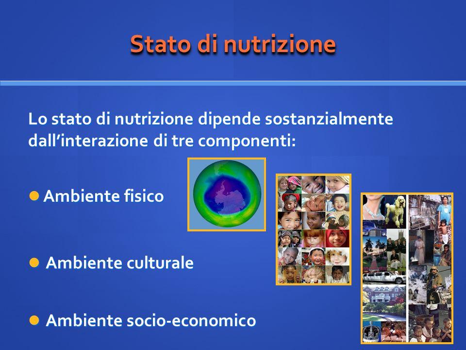 Stato di nutrizione Lo stato di nutrizione dipende sostanzialmente dall'interazione di tre componenti: