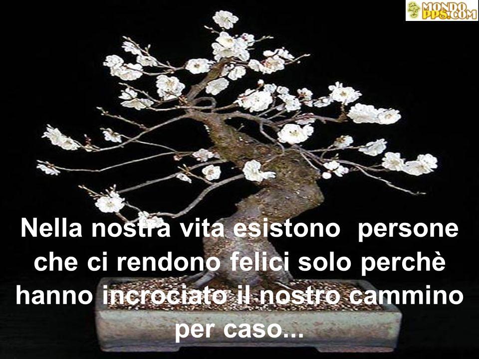 Nella nostra vita esistono persone che ci rendono felici solo perchè hanno incrociato il nostro cammino per caso...