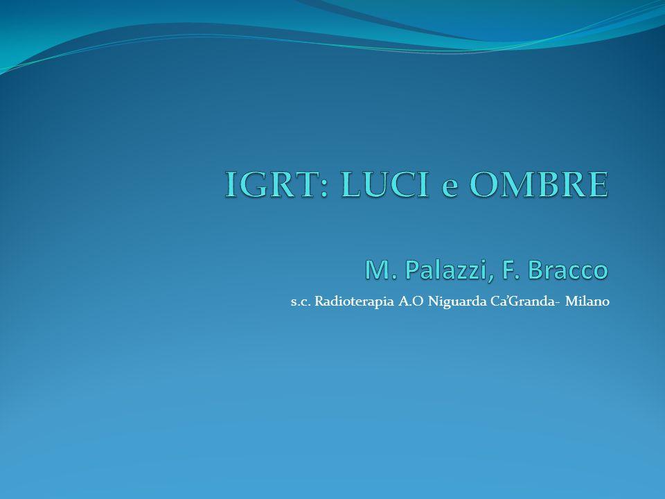 IGRT: LUCI e OMBRE M. Palazzi, F. Bracco