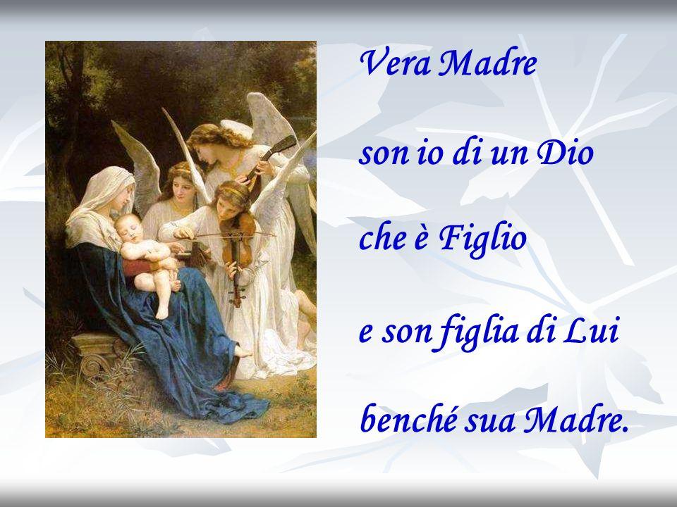Vera Madre son io di un Dio che è Figlio e son figlia di Lui benché sua Madre.