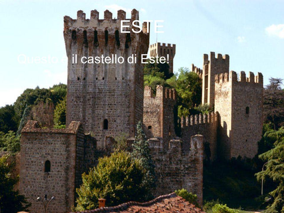 ESTE Questo è il castello di Este!