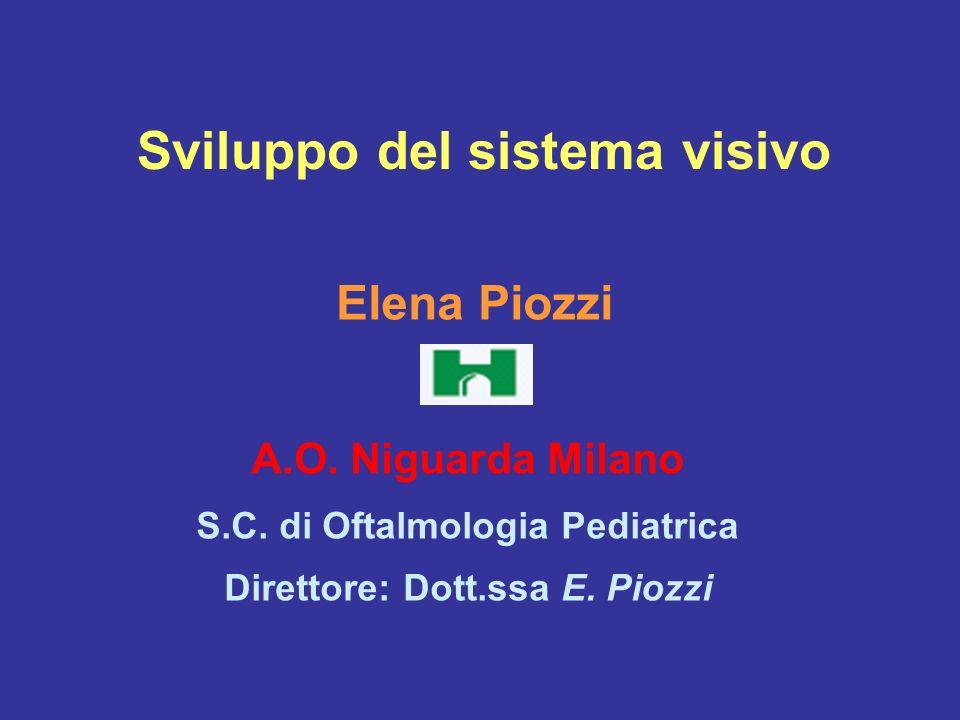 Sviluppo del sistema visivo