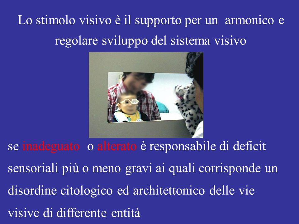 Lo stimolo visivo è il supporto per un armonico e regolare sviluppo del sistema visivo