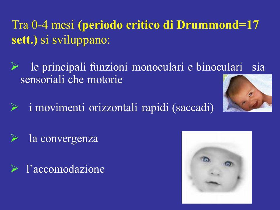 Tra 0-4 mesi (periodo critico di Drummond=17 sett.) si sviluppano: