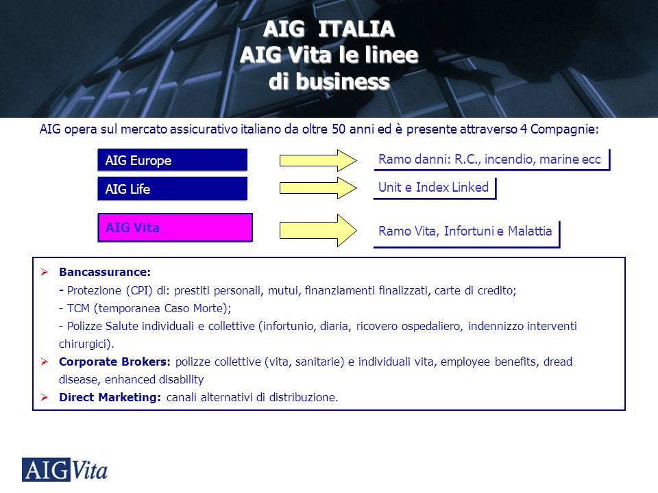 AIG Vita le linee di business