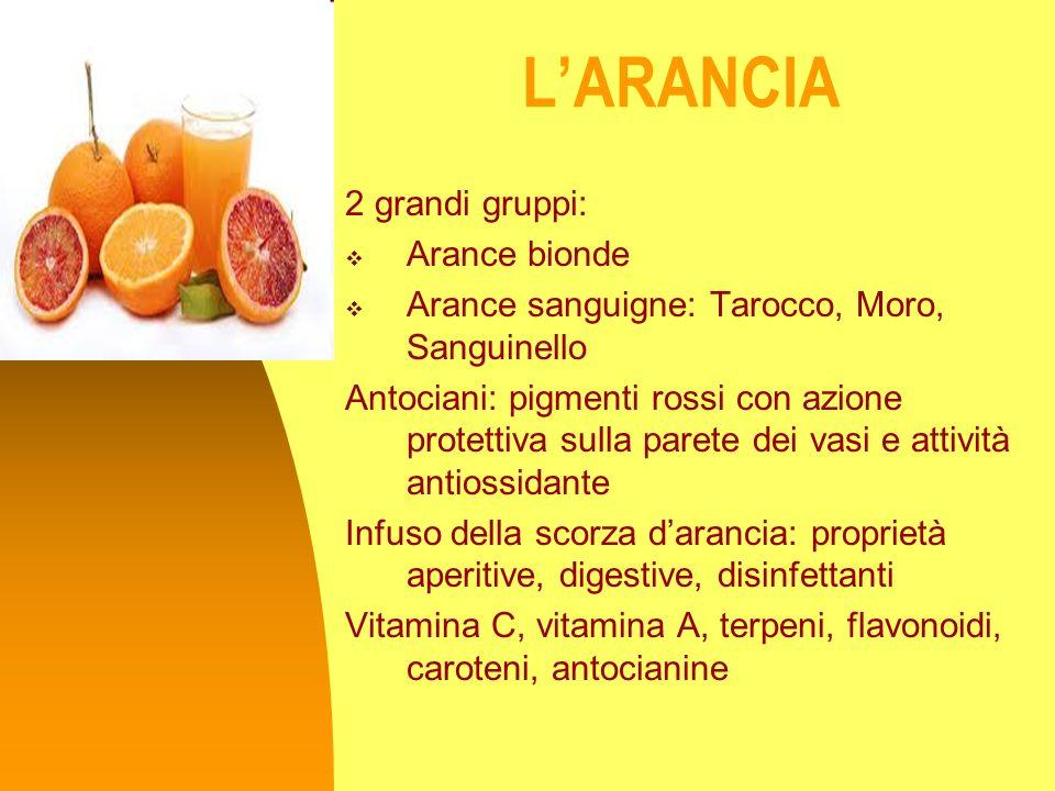 L'ARANCIA 2 grandi gruppi: Arance bionde
