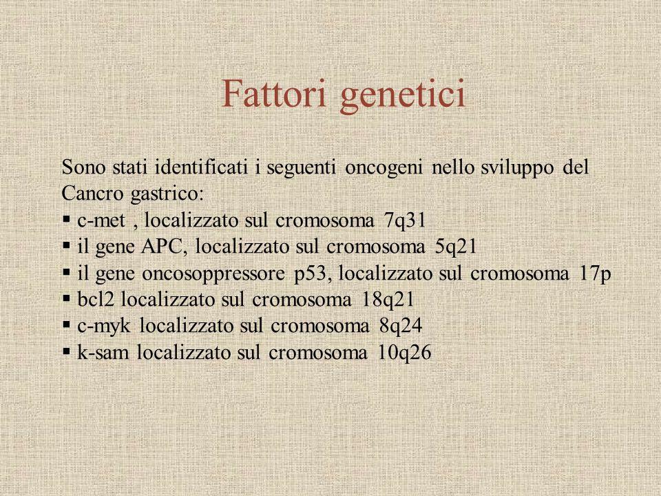 Fattori genetici Sono stati identificati i seguenti oncogeni nello sviluppo del. Cancro gastrico: c-met , localizzato sul cromosoma 7q31.