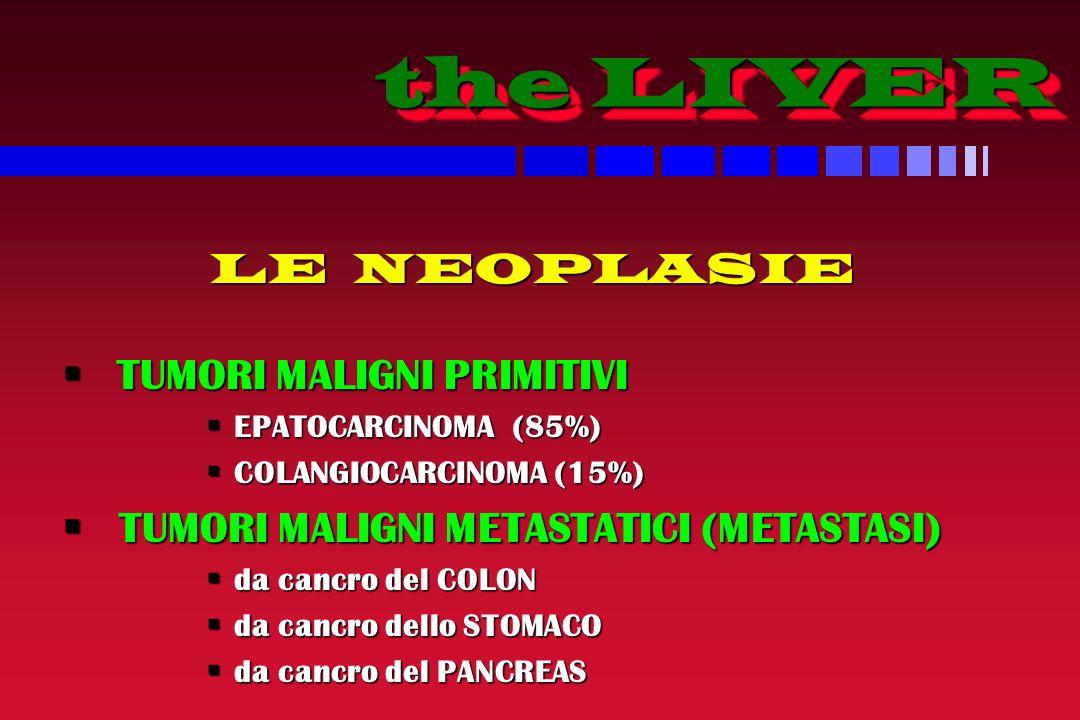 the LIVER LE NEOPLASIE TUMORI MALIGNI PRIMITIVI