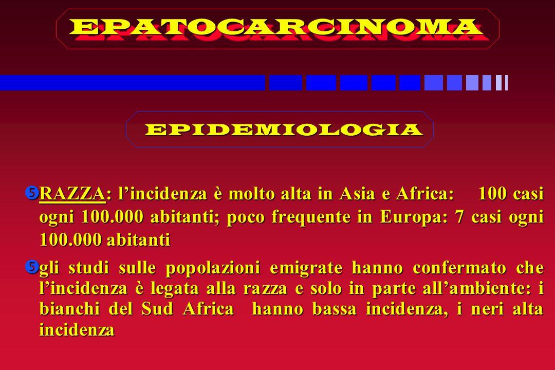 EPATOCARCINOMA EPIDEMIOLOGIA.