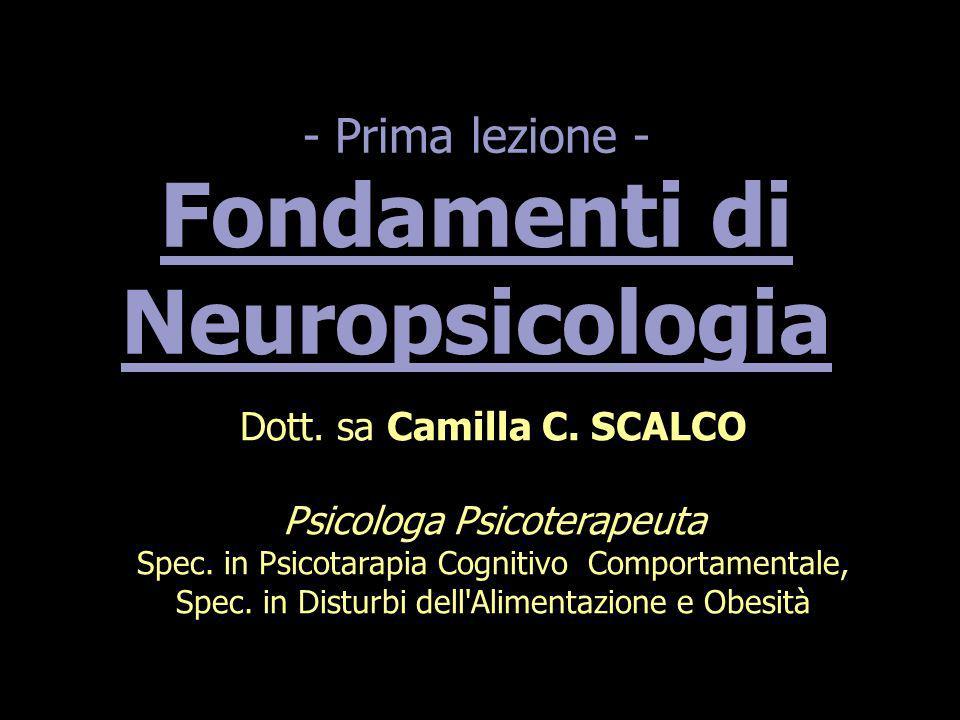 - Prima lezione - Fondamenti di Neuropsicologia