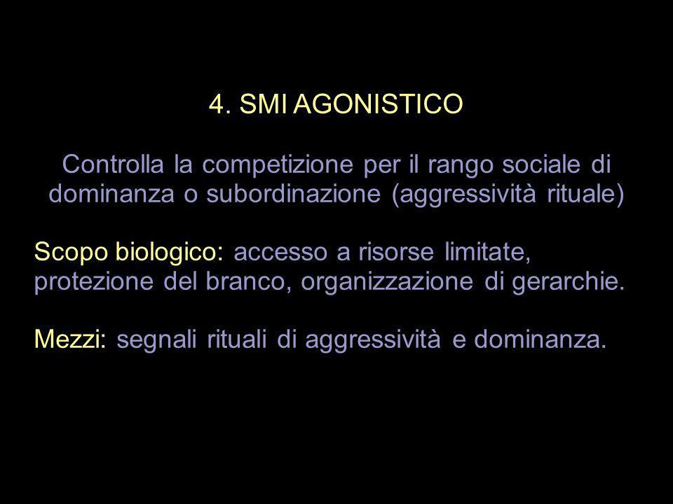 4. SMI AGONISTICO Controlla la competizione per il rango sociale di dominanza o subordinazione (aggressività rituale)
