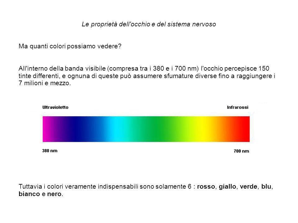 Le proprietà dell occhio e del sistema nervoso