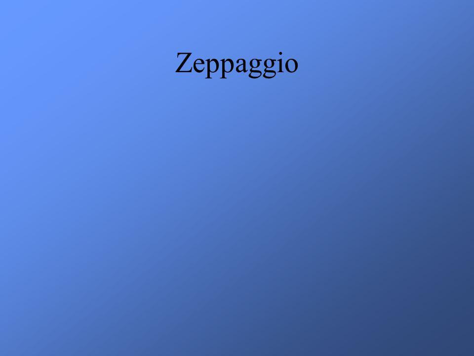 Zeppaggio