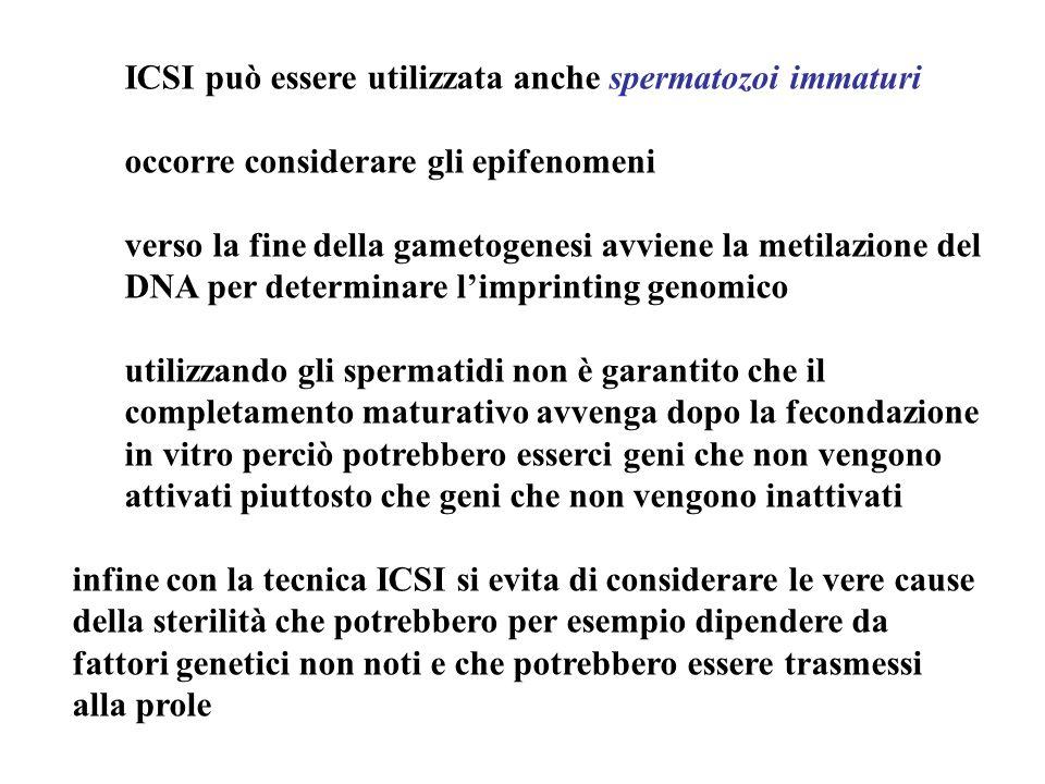 ICSI può essere utilizzata anche spermatozoi immaturi
