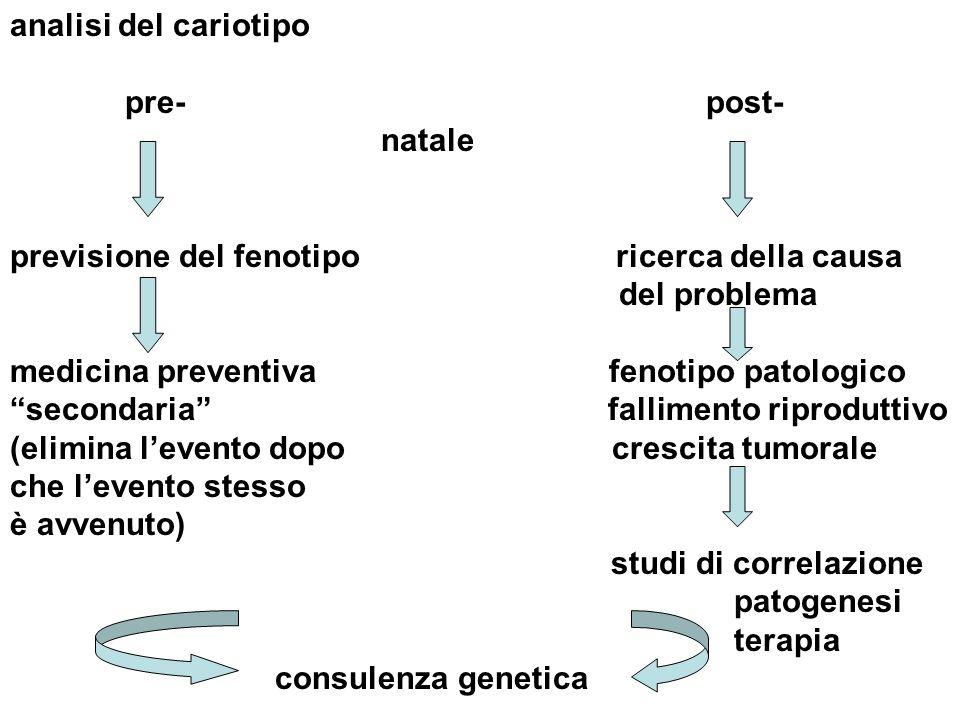 analisi del cariotipo pre- post- natale.