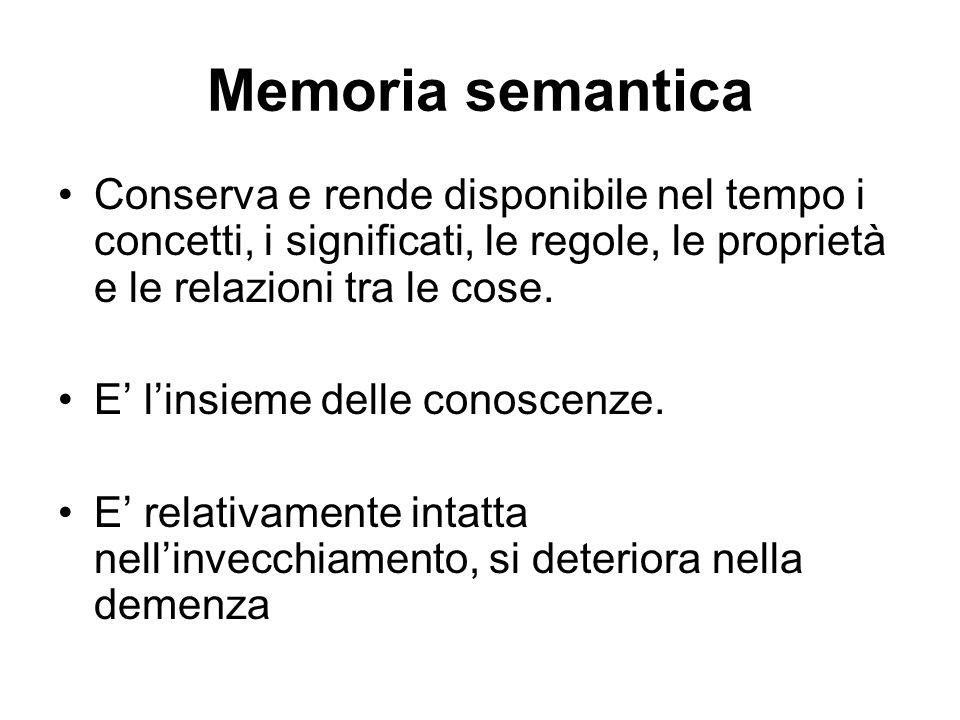 Memoria semantica Conserva e rende disponibile nel tempo i concetti, i significati, le regole, le proprietà e le relazioni tra le cose.