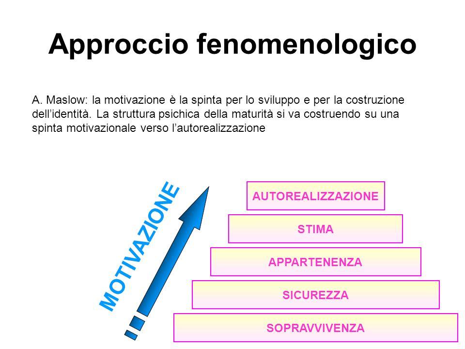 Approccio fenomenologico