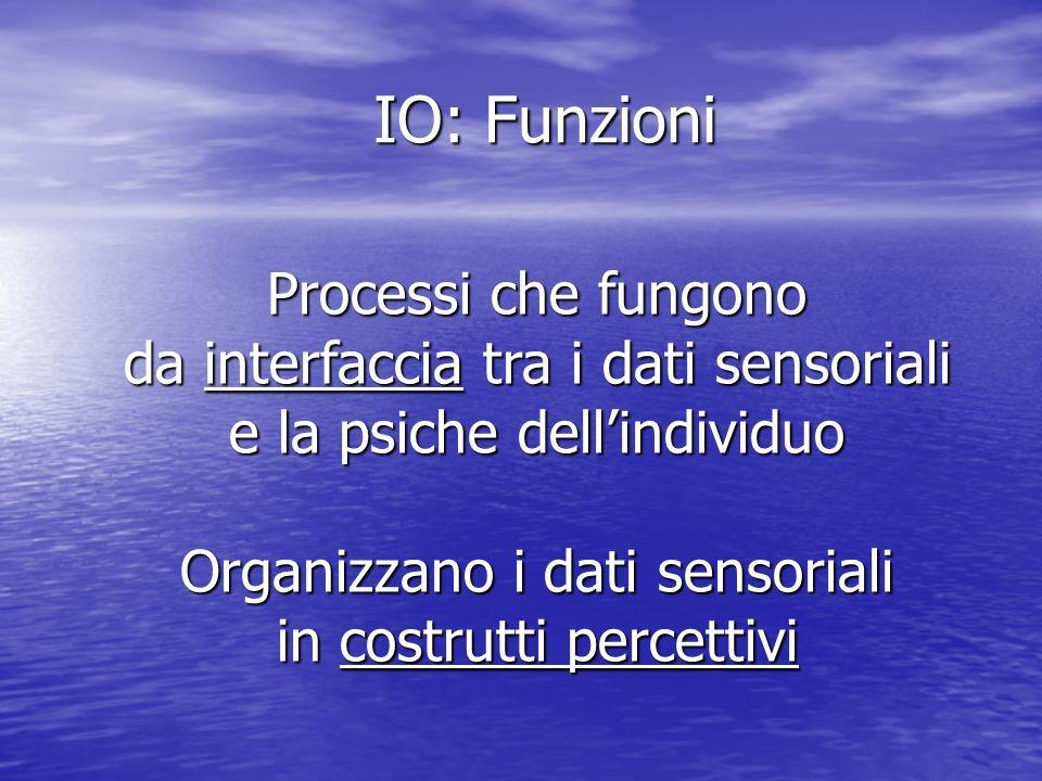 IO: Funzioni Processi che fungono da interfaccia tra i dati sensoriali