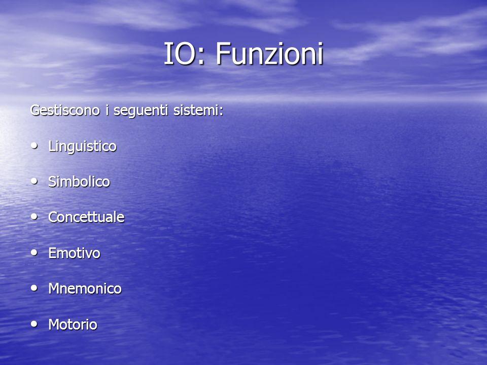 IO: Funzioni Gestiscono i seguenti sistemi: Linguistico Simbolico