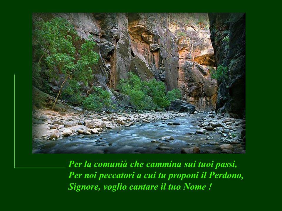 Per la comunià che cammina sui tuoi passi, Per noi peccatori a cui tu proponi il Perdono, Signore, voglio cantare il tuo Nome !