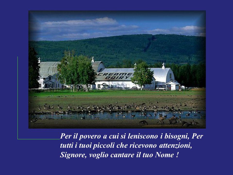 Per il povero a cui si leniscono i bisogni, Per tutti i tuoi piccoli che ricevono attenzioni, Signore, voglio cantare il tuo Nome !