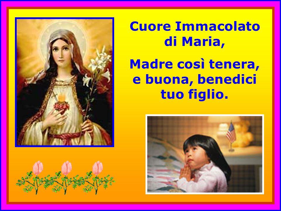 . Cuore Immacolato di Maria,