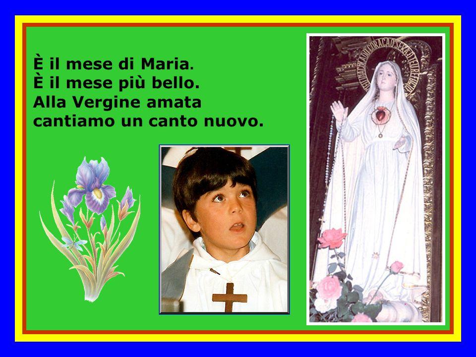 È il mese di Maria. È il mese più bello