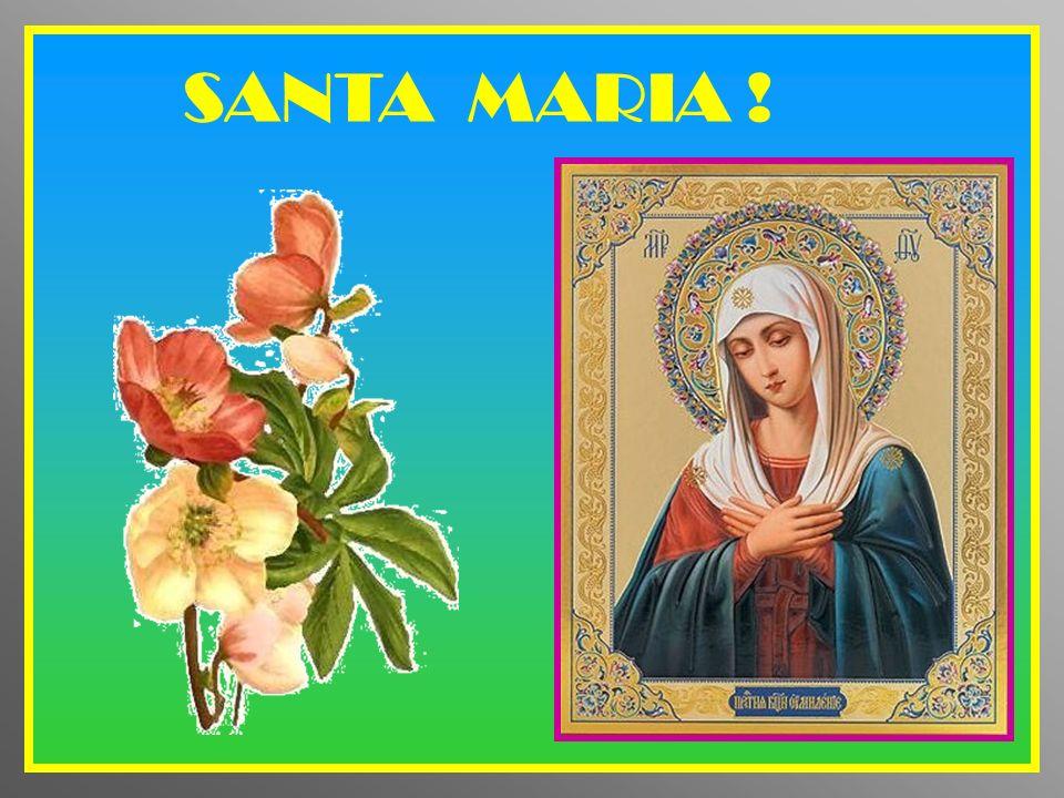 SANTA MARIA !