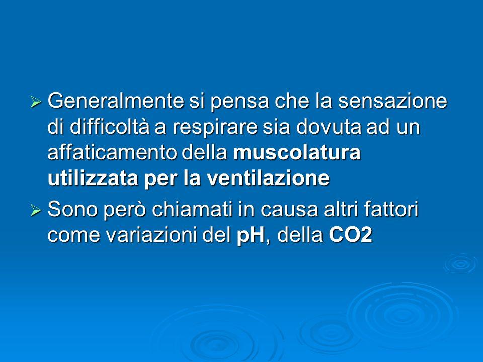 Generalmente si pensa che la sensazione di difficoltà a respirare sia dovuta ad un affaticamento della muscolatura utilizzata per la ventilazione