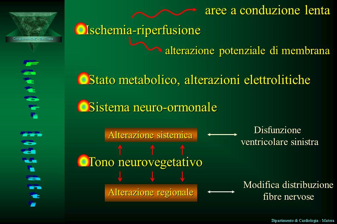 aree a conduzione lenta Ischemia-riperfusione