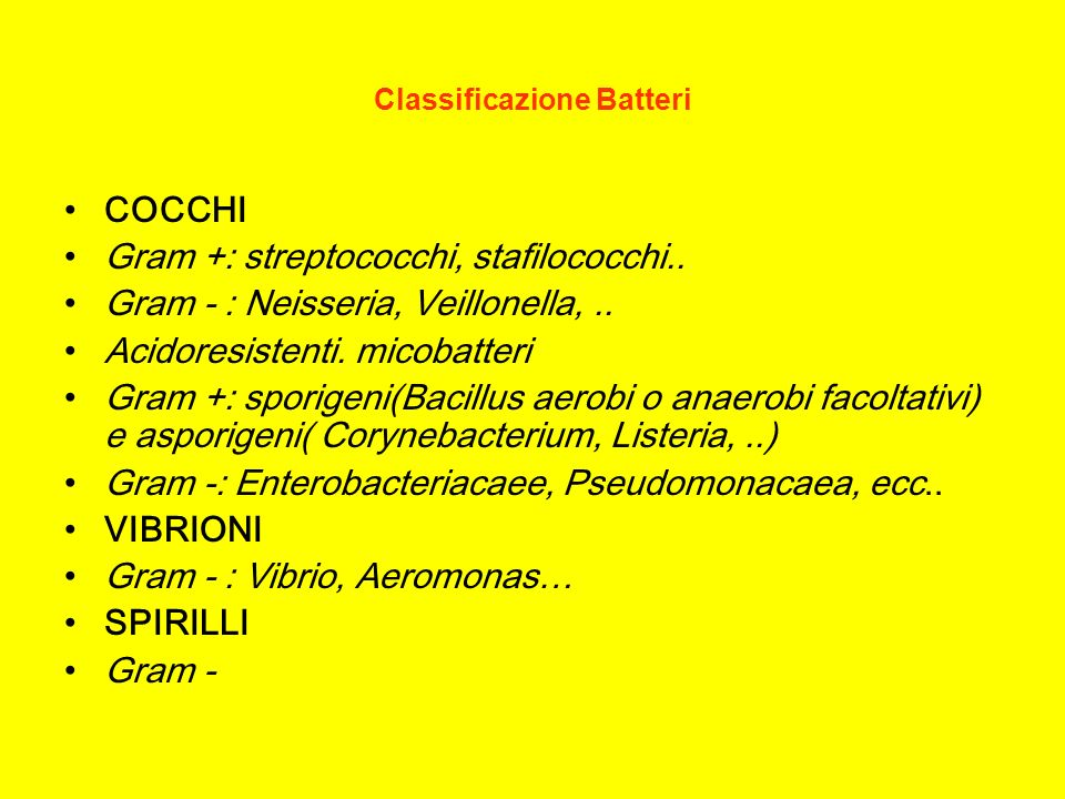 Classificazione Batteri