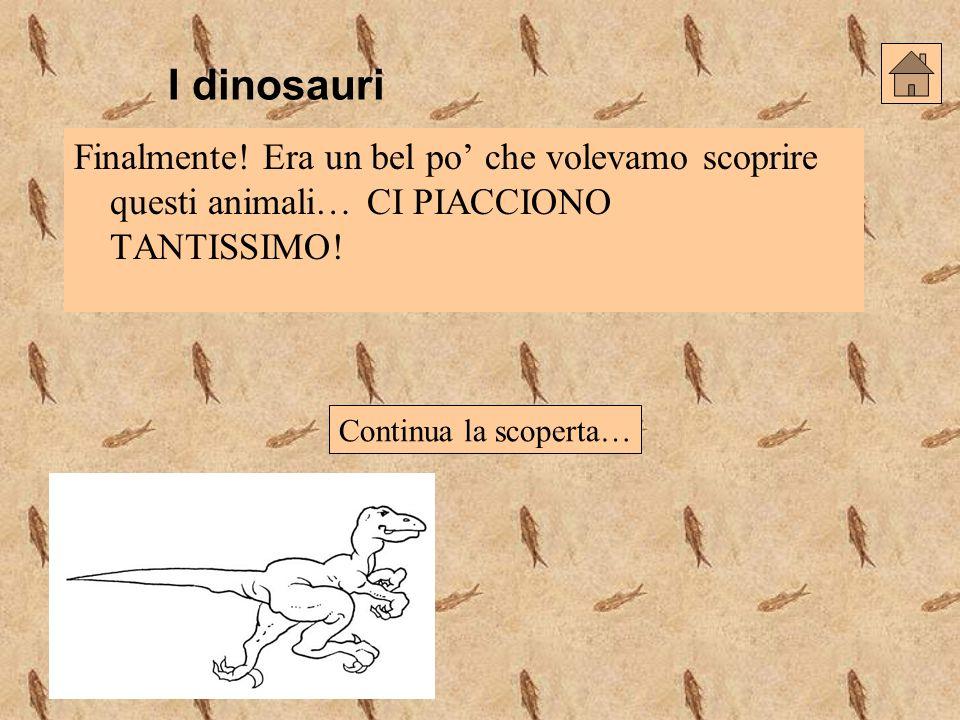 I dinosauri Finalmente! Era un bel po' che volevamo scoprire questi animali… CI PIACCIONO TANTISSIMO!