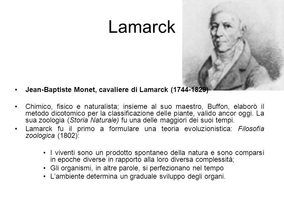 Lamarck Jean-Baptiste Monet, cavaliere di Lamarck (1744-1829)