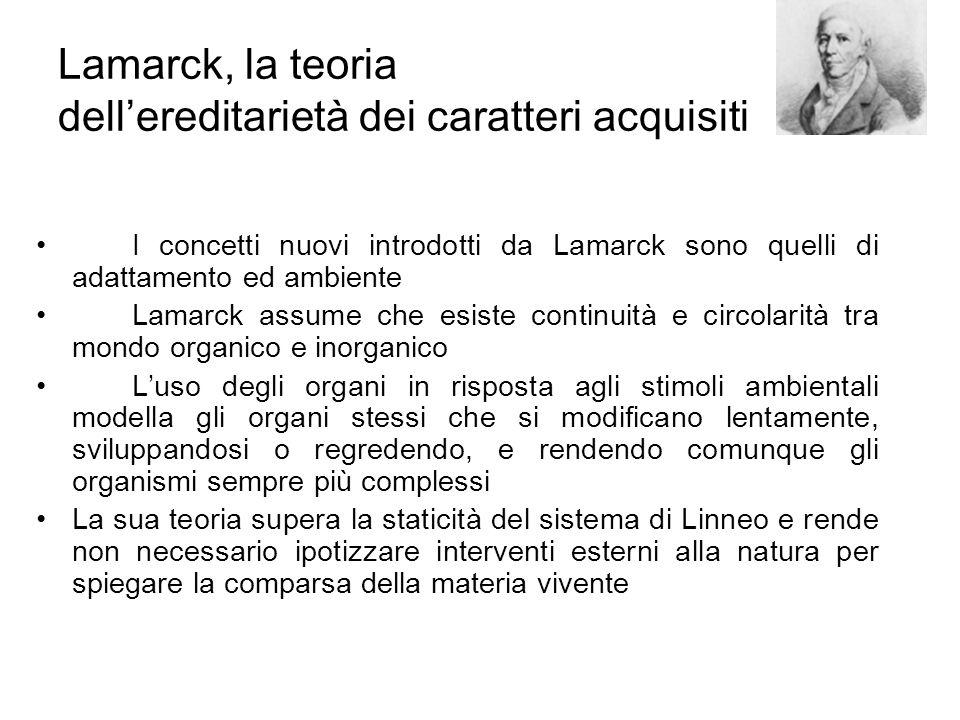 Lamarck, la teoria dell'ereditarietà dei caratteri acquisiti